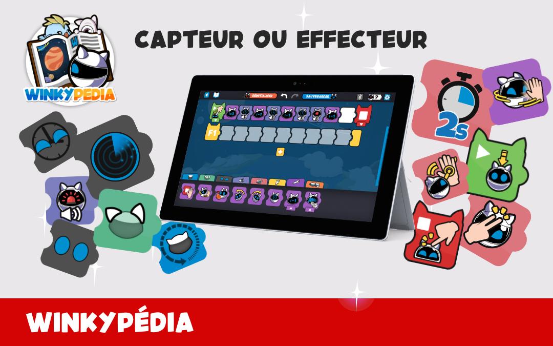 🤖 Définitions du Winkypedia : capteur et effecteur 📚